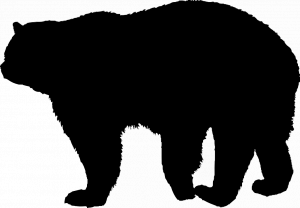 PhyloPic.05f87521.Steven-Traver.Tremarctinae_Tremarctinae-Ursinae_Tremarctos_Tremarctos-ornatus_Ursidae