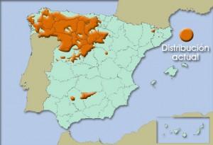 mapa_espana.jpg